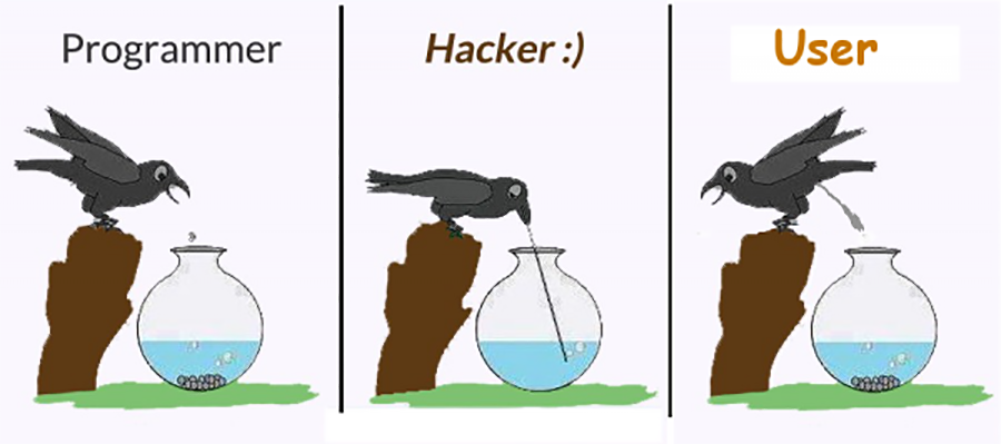 Programmer, Hacker, User Bird