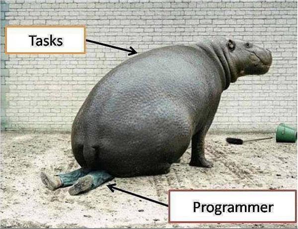 Tasks Vs Programmer